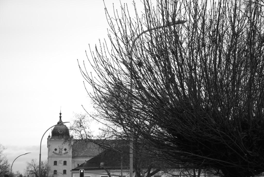 Brauhaus nebst Baum