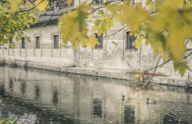 Herbst-Stimmung